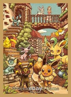 Pokemon Card Eevee's Set Gym special Box Eevee Heroes Japanese